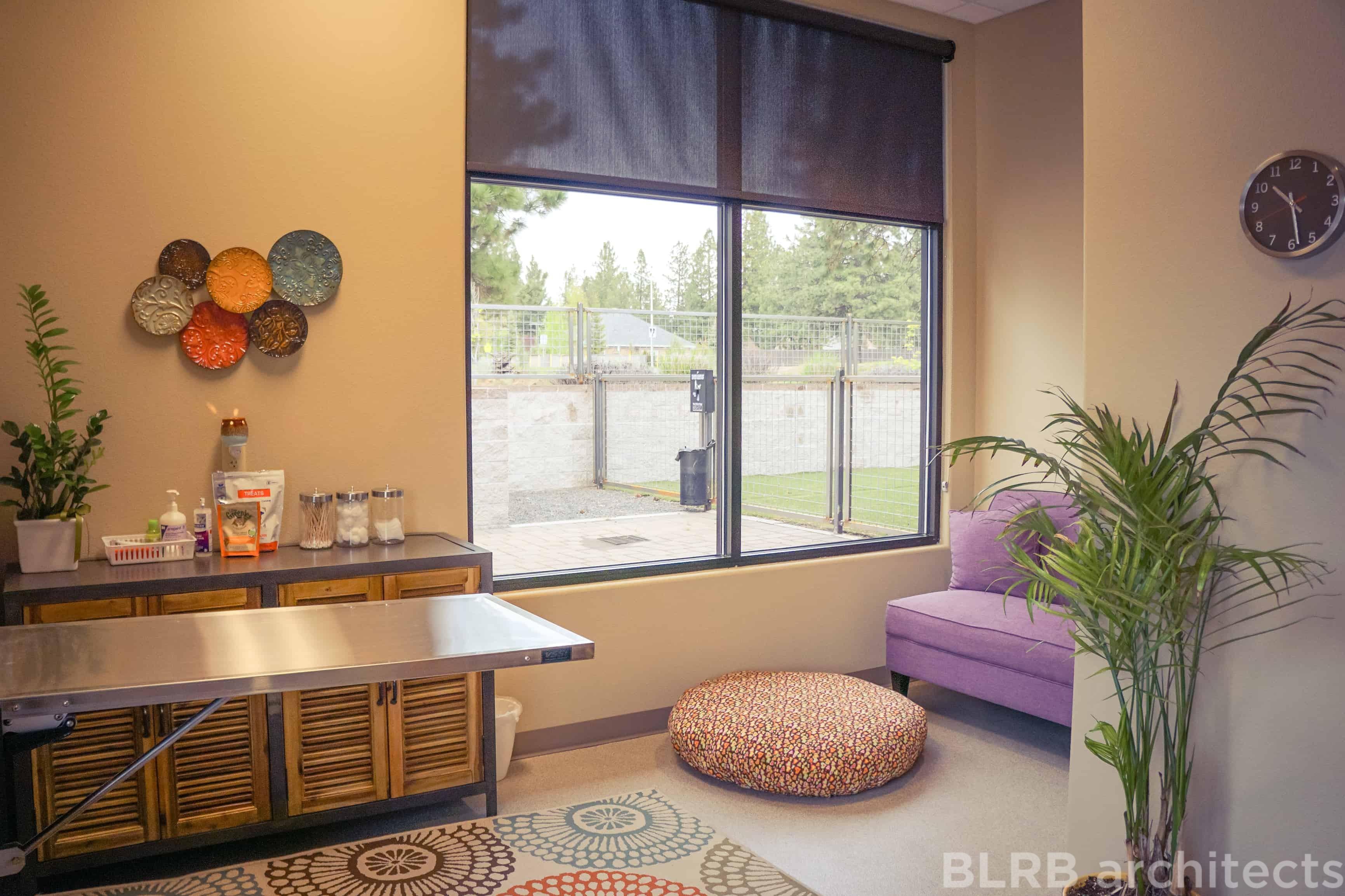 Brookswood veterinary client comfort room interior design for Comfort room interior designs